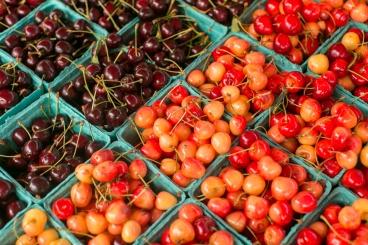 farm_market-7